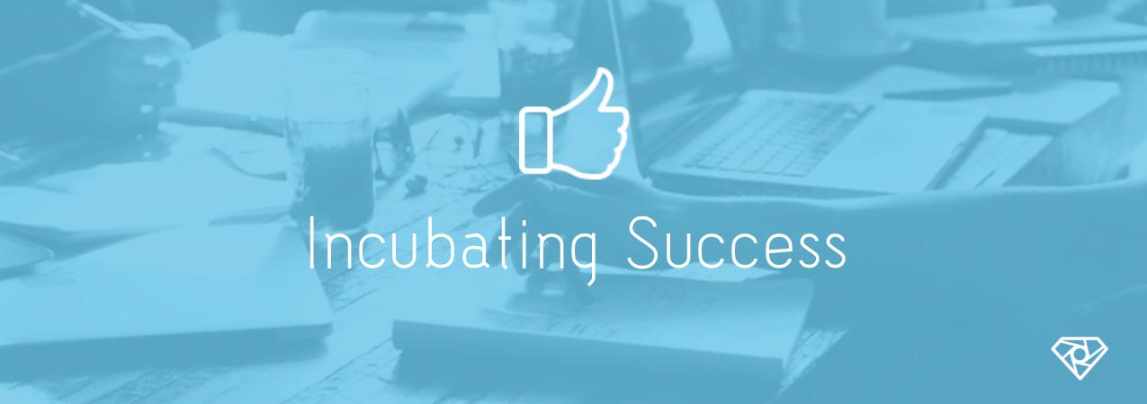 Incubating Success - Incubating Success - start-up
